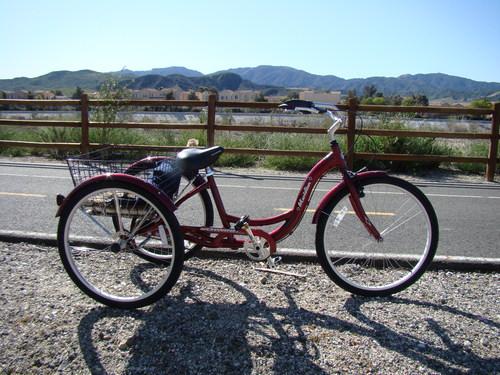 05832c608bf Schwinn Meridian Adult 26-Inch   Tricycle World